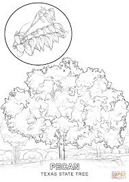 tree coloring pages leaves page of a family plants without
