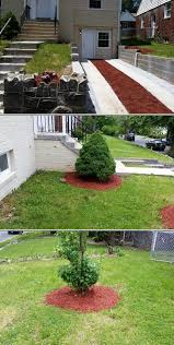 Landscape Maintenance Contract by Best 25 Lawn Service Ideas On Pinterest Lawn Cutting Service