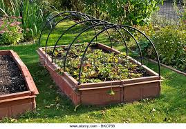Strawberry Bed Raised Bed Allotment Stock Photos U0026 Raised Bed Allotment Stock