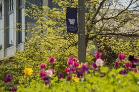 Photo Wall by Welcome Uw Tacoma