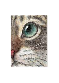 cat art print cat face drawing art print the innocent cat