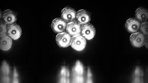 wallpaper bunga lingkaran gambar cahaya hitam dan putih bunga kegelapan lu satu