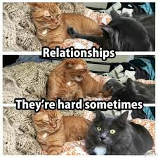 Relationship Memes For Him - 68 very superb relationship memes