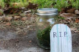 amazing mason jar ideas for people who are totally sick of mason