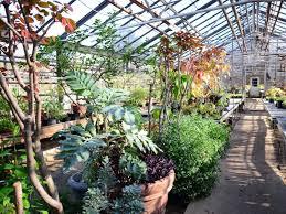 Garden Botanical Botanical Garden Flushing New York