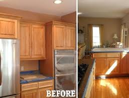 Painting Techniques For Kitchen Cabinets Kitchen Cabinet Faux Finishes Kitchen Cabinets Traditional Kitchen