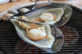 cuisiner la palourde images gratuites plat aliments cuisine huître fruit de mer