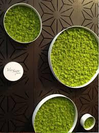 home interior designs moss wall art comfy living rooms