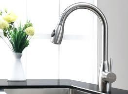 bisque kitchen faucet delta faucet color delta bisque kitchen faucet on delta faucet