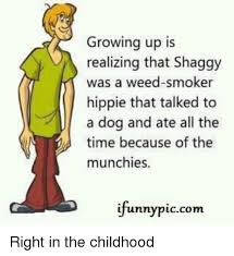Hippie Memes - growing up is realizing that shaggy was a weed smoker hippie that