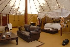 Safari Decor For Living Room Safari Living Room Ideas Theme Inspired Decor Surripui Net