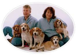 Creature Comforts Pet Sitting Creature Comforts Pet Care Llc