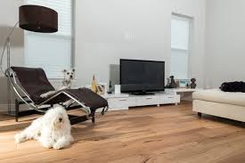 Dogs And Laminate Wood Floors Wire Brushed Natural Hickory Ability Wood Flooring