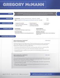 it resumes templates example it security careerperfectcom free
