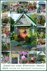 around the potting shed 2016 year in review home is where the