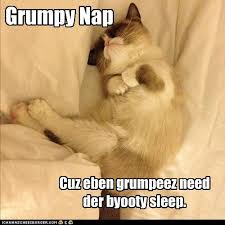 Grumpy Cat Sleep Meme - but alwayz wake up on grumpy side lolcats lol cat memes