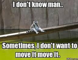 Platypus Meme - luxury platypus meme mighty wallpaper