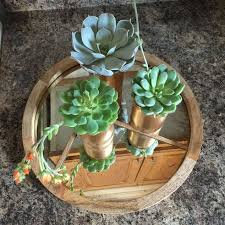 planter for succulents don t toss your empty tin cans hometalk