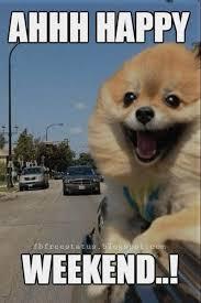 Happy Weekend Meme - best 25 happy weekend meme ideas on pinterest funny life baby