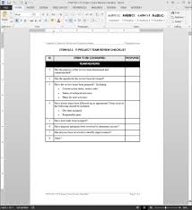 it project team review checklist template