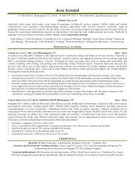 resume sample for university application credit analyst resume