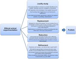 good experimental design considering aspects of the 3rs principles within experimental animal