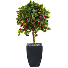 Preserved Boxwood Topiary Trees Contemporary Home Design Ideas Pictures Silk Topiary Trees Nearly