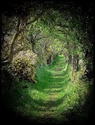 79 best ireland images on lonely planet ireland