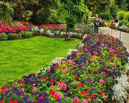 how to plant flowers for beginners by best flower garden design