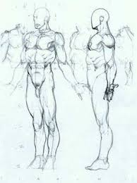 32 best model sheets and figures images on pinterest male figure