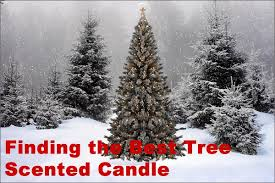 scent snob tree scented candles for the holidays