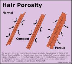 how to take care of the hair cuticle hair porosity and how to determine or measure the porosity of your