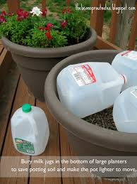 pots in gardens ideas use empty milk cartons to fill up space in large pots so you don