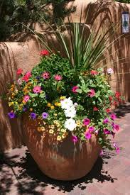 Summer Container Garden Ideas Amazing Container Gardens For Sun Home Outdoor Decoration Sun
