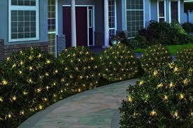 outdoor christmas lights for bushes christmas lights for bushes christmas prep