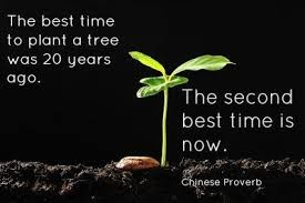 deb talbot on the best time to plant a tree was 20 years