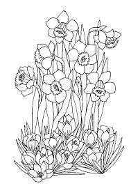 dessin à colorier d u0027un parterre de très jolies fleurs coloriages