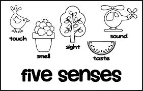 5 senses cute coloring page wecoloringpage