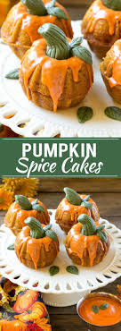 pumpkin spice cake dinner at the zoo