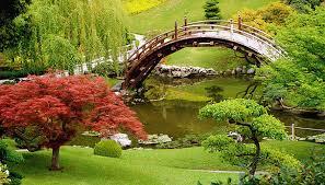 definition of ornamental plants garden guides