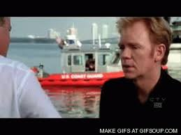 Horatio Caine Memes - horatio gifs search find make share gfycat gifs