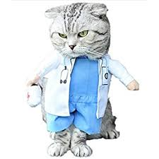 Halloween Costumes Cats Wear Amazon Topsung Cool Caribbean Pirate Pet Halloween Costume