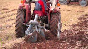 mf 135 tractor pulling ferguson disc plough in wheat stubble youtube