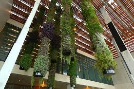 Vertical Gardens Miami - pérez art museum miami