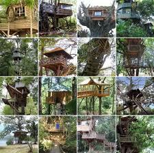 three house plans custom tree house plans diy ideas building designs
