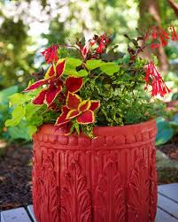 Flowers For Window Boxes Partial Shade - 35 beautiful container gardens midwest living