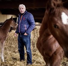 Pferdezentrum Bad Saarow Pferdezucht In Sachsen Anhalt Erholt Sich Langsam Welt