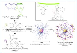 visible drug delivery by supramolecular nanocarriers directing to