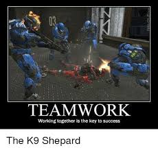 Teamwork Memes - teamwork working together is the key to success the k9 shepard