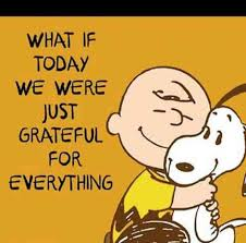 Gratitude Meme - 35 best gratitude quotes and memes to share on social media when